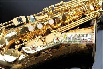 S-601 Berlioz Alto Saxophone