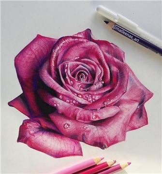 木顏色花卉工作坊 Colorpencil floral Workshop