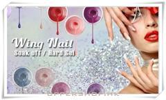 Soak off Gel 手$168