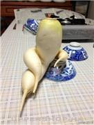 蘿蔔大人在此