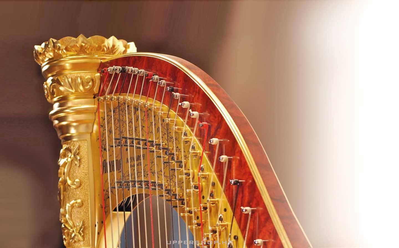 Aoyama Harps Hong Kong