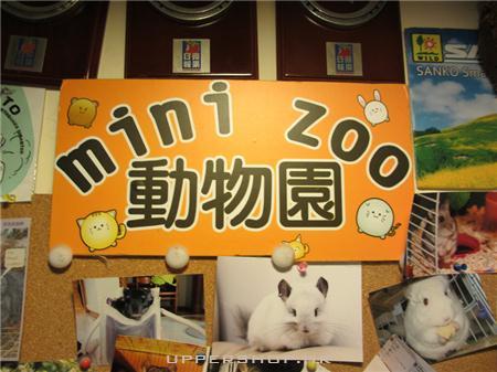 mini zoo 动物园