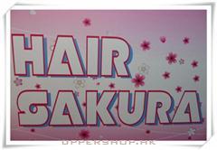 Hair Sakura