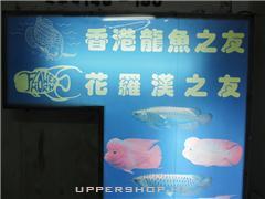 香港龍魚之友