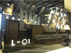 L-01 Hair