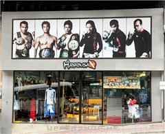 Hayabusa Martial Arts & Fitness Center