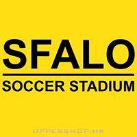飛龍室內足球場SFALO Soccer Stadium