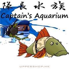 隊長水族Captain Aquarium