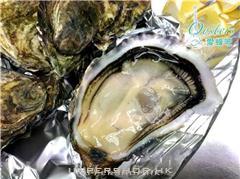 愛蠔吧Oysters