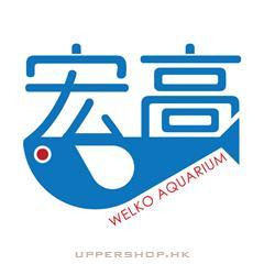宏高水族Welko Hong Aquarium