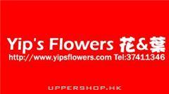 Yip's Flowers 花與葉
