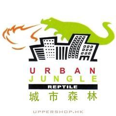 城市森林爬蟲專門店Urban Jungle Reptile