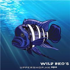 野人水族Wild Bro's aqua