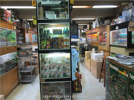 城市森林爬蟲專門店