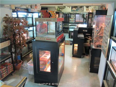 爬蟲地帶 商舖圖片2
