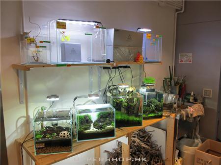 CO2 Aquarium Shop 商舖圖片5