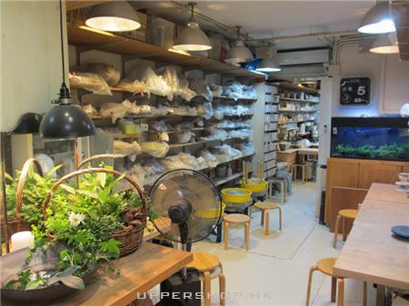 大陶工作室
