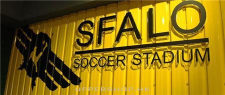 飛龍室內足球場