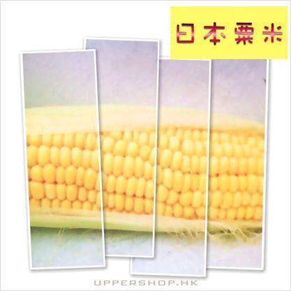 昇和食品 Showa Foods