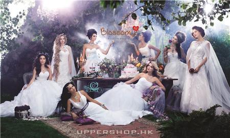 Blossom Wedding Company Limited